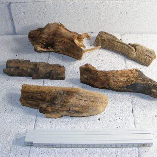 5-Stk-Treibholz-Schwemmholz-vom-Strand-Driftwood-Dekoration-Y21-222164457630