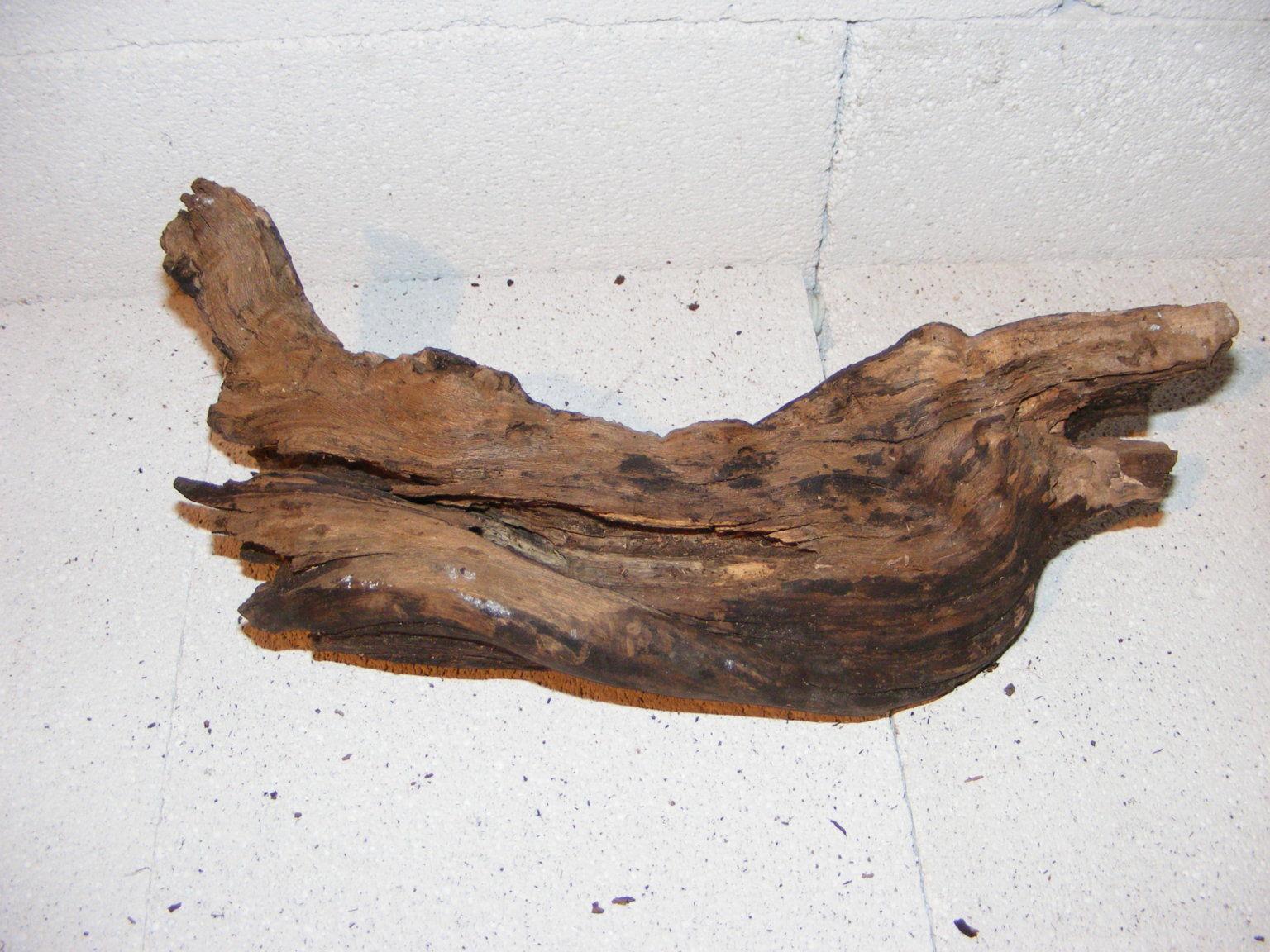 Wurzel Deko rebwurzel ast 30×11 cm terrarium wurzel deko wein rebe rebenholz