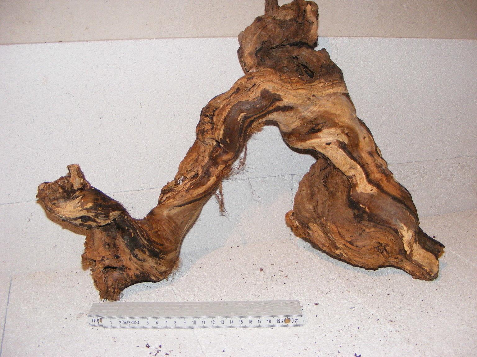 Wurzel Deko wurzel ast 51×38 cm dekoholz dekoration rebholz rebenholz echt holz