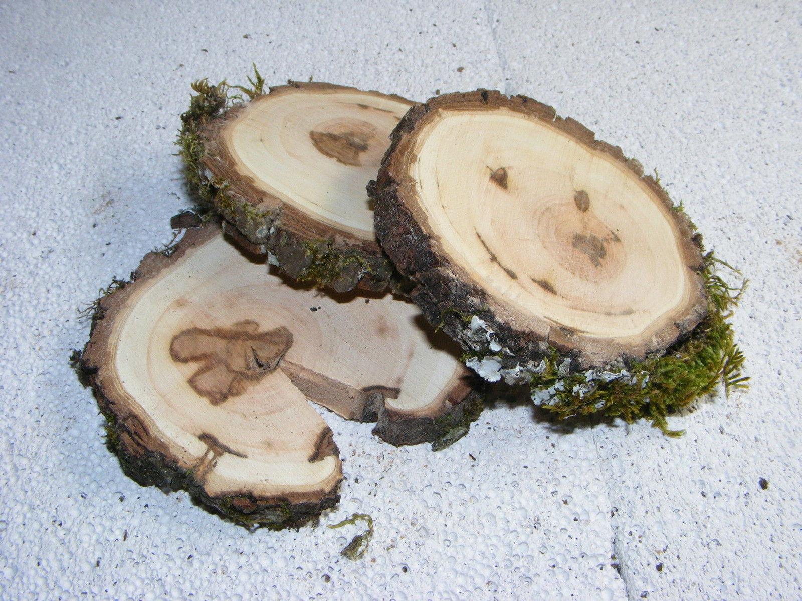3 stk astscheiben birnenholz ca 9 1 2 cm baumscheibe geschliffen c1 9 gerdas gr nwaren. Black Bedroom Furniture Sets. Home Design Ideas